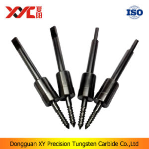 Xyc Metal Manufacturer Tungsten Carbide Tool Parts with Great Price pictures & photos