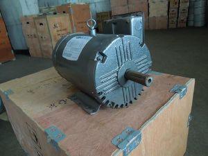 NEMA Standard Asynchronous Electric Motor