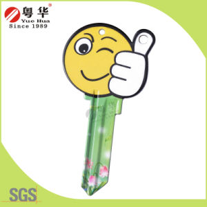 Hot Sale High Quality Custom Colorful Blank Door Key with Nickel Plated pictures & photos