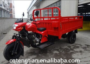 2015 New Three Wheel Cargo Motorcycle pictures & photos