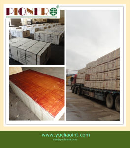 3′x6′ Red Film Faced Plywood for Construction 002 pictures & photos