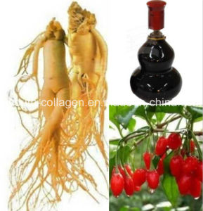 Top Ginseng Wolfberry Tonic Wine, Lmprove Sperm, Nourishing Marrow, Promoting Meridian and Blood, Anticancer, Pure Natural Aphrodisiac Health Food, Prol pictures & photos