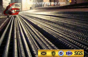 Screw Thread Steel Bar/Bolt Steel Bar/Deformed Steel Bar