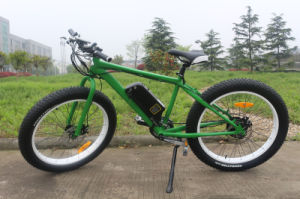 Manufacturer 1000W 48V Fat Tire Mountain Electric Bikes pictures & photos