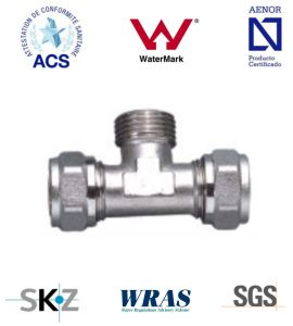 Compression Fitting - Brass Fitting - Plumbing Fitting (Male Tee) pictures & photos