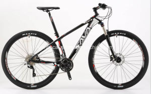 29′′ Mountain Bike for Adults pictures & photos