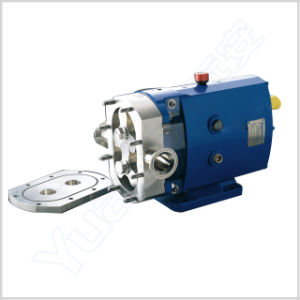 Stainless Steel Sanitary Rotary Lobe Pump pictures & photos