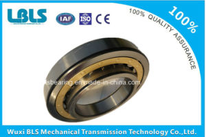 Nu Series Cylindrical Roller Bearings pictures & photos