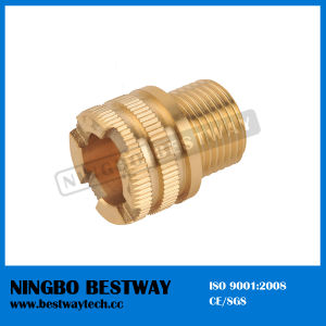 High Quality Hexagon Brass PPR Fitting (BW-726) pictures & photos