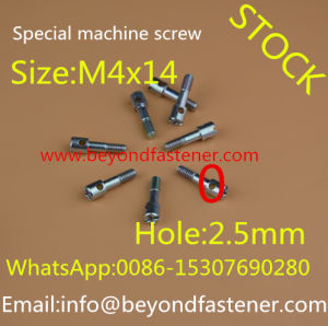 Big Head Screw Special Bolts pictures & photos