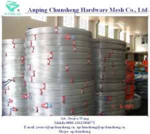 High Tensile Strength Oval Steel Wire for Farm pictures & photos