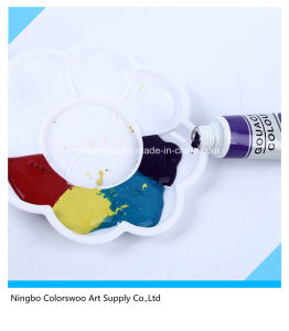 12*12ml Non Toxic Water Color Paint in Plastic Tube for Drawing pictures & photos