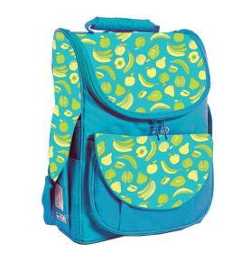 Kids School Bag, Printing School Backpack pictures & photos