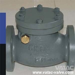 JIS Standard 10k Cast Steel Wcb/Lcb/Wc6 Marine Check Valve pictures & photos