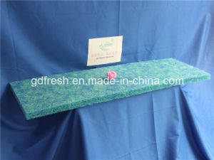 Biochemical Filter Media for Fishpond pictures & photos