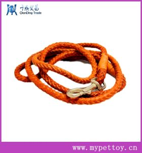 Metallic Leather Brown Large Dog Leather Leash pictures & photos