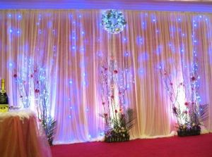 LED Curtain Light Decoration Wedding Christmas pictures & photos