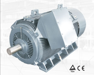 Y2 Low Voltage High Output Electric Motor 280kw-8