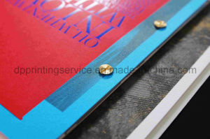 Special Designed Catalogue with Metal Holes pictures & photos