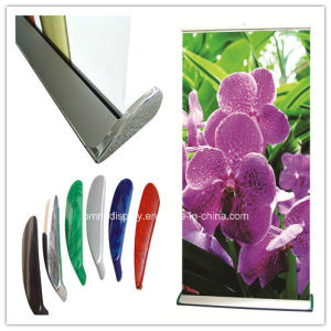 Single Side Display Banner Roll up (DW-R-S-18 85CM) pictures & photos