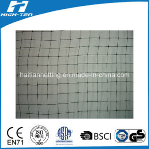 PP Extruded Net with 9X13mm Mesh Hole pictures & photos