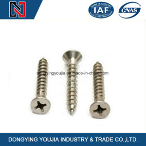 Carbon Steel Cross Recessed Countersunk Head Machine Screw pictures & photos