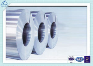 High Quality Cold Rolling & Hot Rolling Aluminum Coil