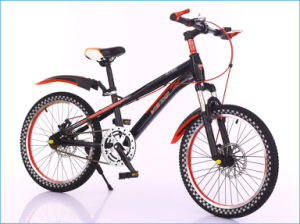 20 Inch Single Speed MTB Mountain Bike Made in China (MB-036) pictures & photos