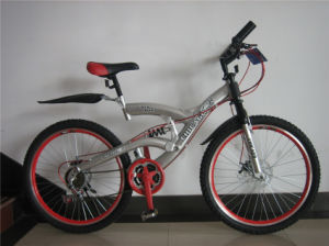 "26"" MTB Y Type Bicycle with Fron & Rear Disc Brake (HC-2606) pictures & photos"