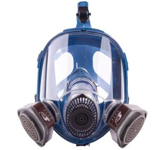 Suit Painting Spraying Similar for 6800 Silicone Gas Mask Full Face Facepiece Respirator pictures & photos