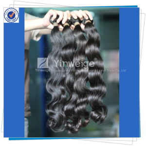 No Lice/Shedding, Unprocessed, Virgin Brazilian Hair Extension (bh-5a-BW)