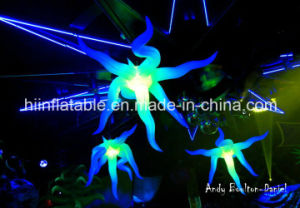 Party/Event/Club Decorative Multi-Color Inflatable LED Star/LED Star Light Effects pictures & photos