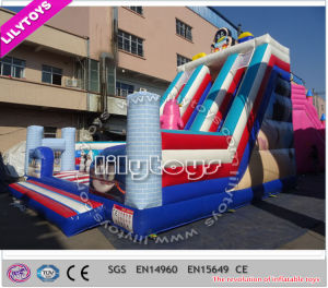 Lilytoys! Newest Customized Inflatable Jumping Bouncer Combo for Sale (Lilytoys-New-044) pictures & photos