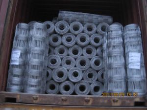High Quality Hot-Dipped Galvanized Cattle Fence pictures & photos