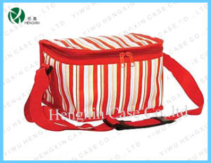 Professional Cosmetic Beauty Cooler Bag (HX-CL1105) pictures & photos