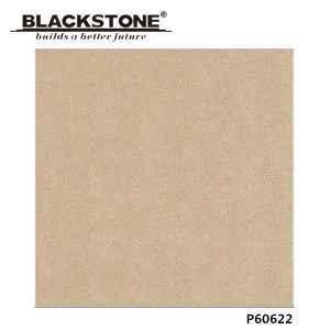 Good Quality 600X600mm Glazed Matt Porcelain Floor Tile (P60622) pictures & photos
