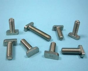 High Quality Stainless Steel and Carbon Steel T Bolt Made in China pictures & photos