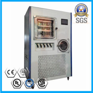 China High Quality Fruits Freeze Drying Equipment pictures & photos