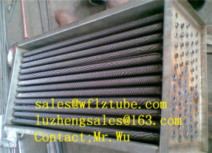Stainless TP304 Fins Heat Exchanger, Tp316 Fins Heat Exchanger pictures & photos