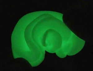 Luminous Thinking Putty pictures & photos