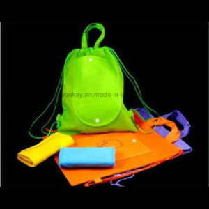 Promotional OEM Eco Friendly PP Non Woven Shopping Bag pictures & photos