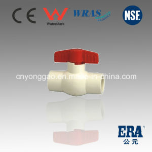 Made in China Certified for Hot and Cold Water Plastic Fitting Manufacture ASTM D2846 Era CPVC Fitting pictures & photos