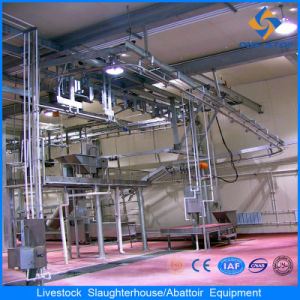 Cattle Slaughter Processing Line Cattle Abattoir Equipment pictures & photos