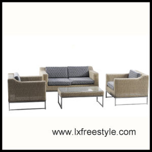 Outdoor Wicker Furniture with SGS Certification (SF-009)