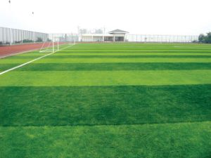 Artificial Turf for Soccer Pitch