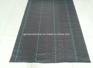 Weed Barrier Fabric, Black Anti Grass Control Landscape PP Woven fabric pictures & photos