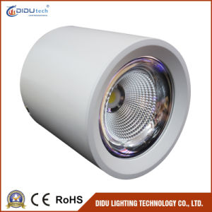 High Lumen No Dimmable SMD LED Ceiling Light with 12W