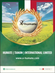 X-Humate H95 Series Humate 95% Shiny Flakes pictures & photos