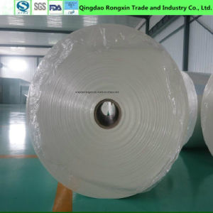 Food Grade Double Sides PE Coated Paper in Rolls pictures & photos