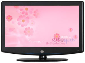 40 Inch Full HD LCD TV (4010MS)